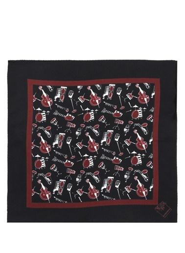 Atkı Dolce & Gabbana